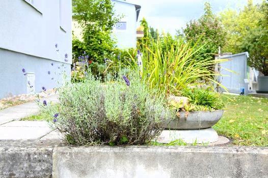 Ruhige 4 Zimmer Gartenwohnung  in Mauer! /  / 1230Wien / Bild 10
