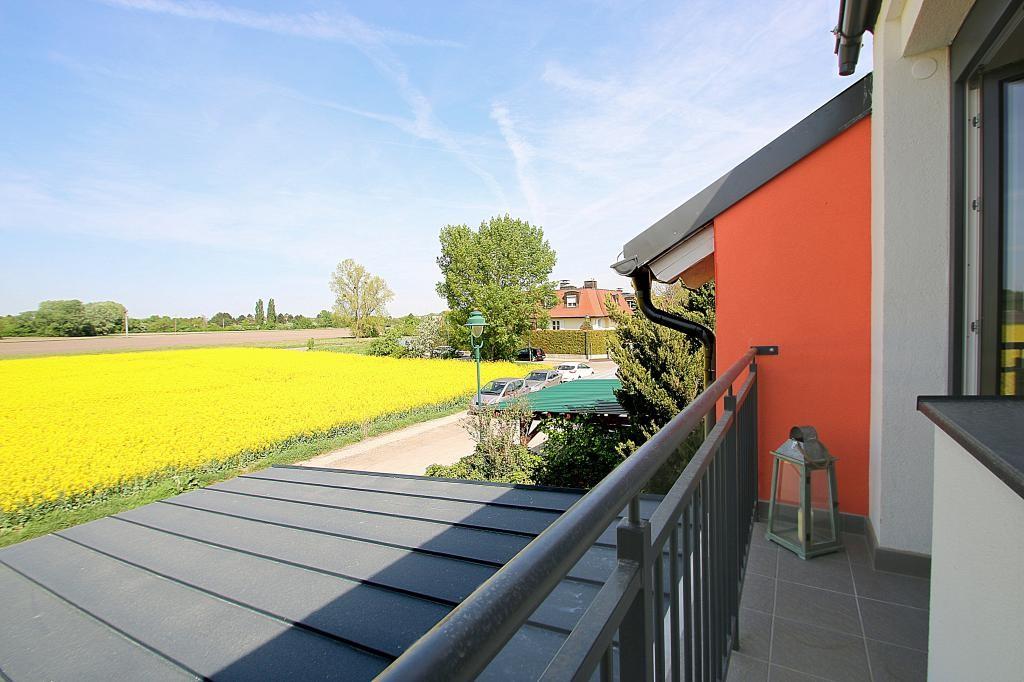 Erstbezug Niedrigenergie-Häuser im geschichtsträchtigen Laxenburg. Massive Bauweise mit Keller und 2 Autostellplätzen /  / 2361Laxenburg / Bild 11