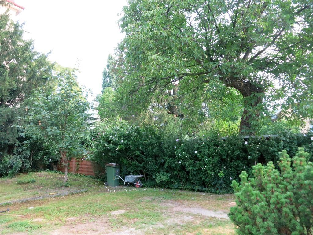 jpgcnt ---- Neusanierte Gartenwohnung in bester Lage, Haus mit nur 2 Wohnungen /  / 1130Wien / Bild 3