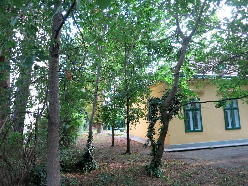 jpgcnt ---- Neusanierte Gartenwohnung in bester Lage, Haus mit nur 2 Wohnungen /  / 1130Wien / Bild 4