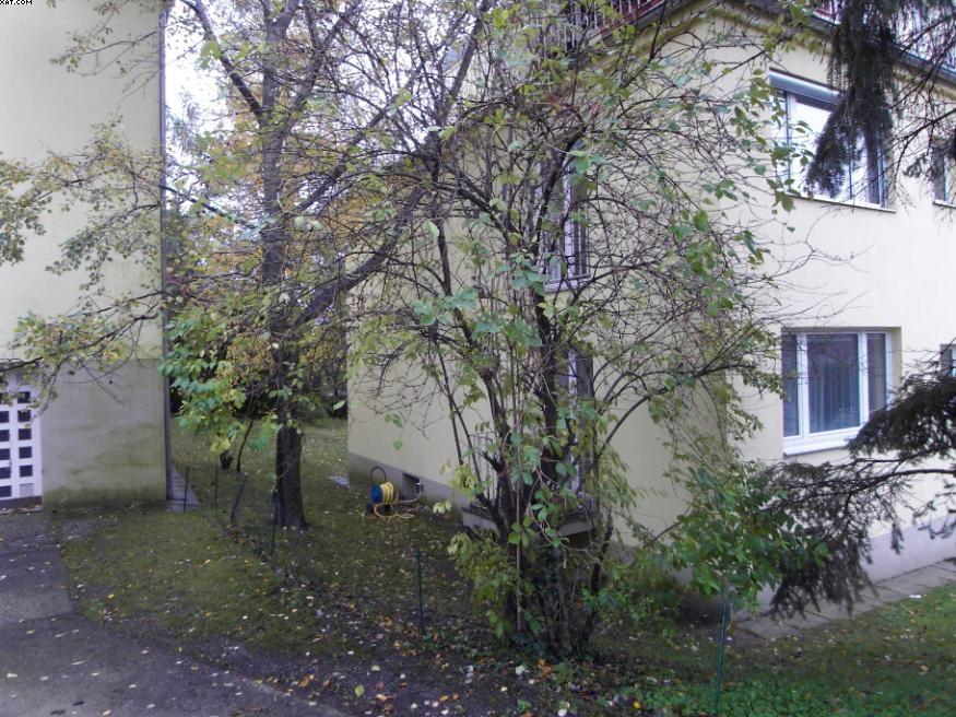 Sonnige Wohnung in Grünruhelage /  / 1190Wien / Bild 10