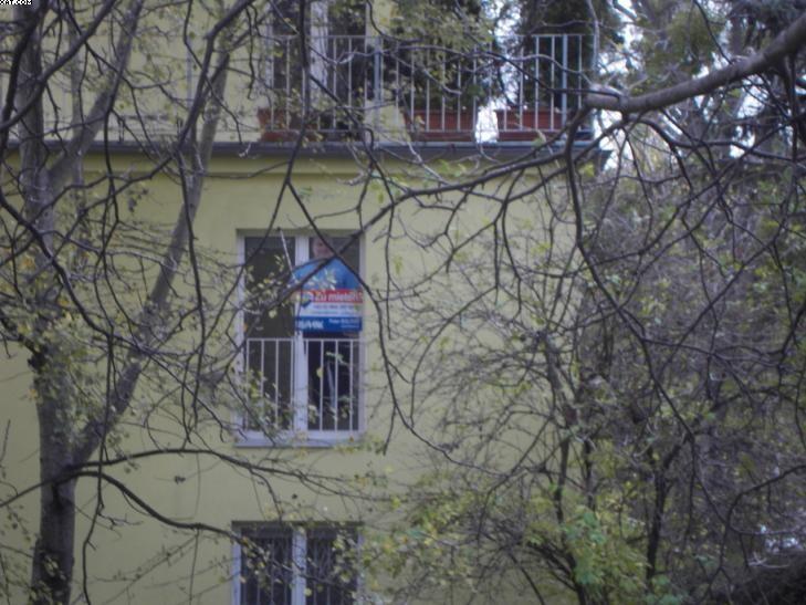 Sonnige Wohnung in Grünruhelage /  / 1190Wien / Bild 11