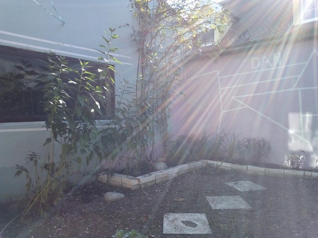 jpgcnt ---- Schnäppchen Wohnhaus mit kleinem begrünten Hof /  / 2274Rabensburg / Bild 2