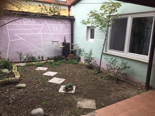 jpgcnt ---- Schnäppchen Wohnhaus mit kleinem begrünten Hof /  / 2274Rabensburg / Bild 3