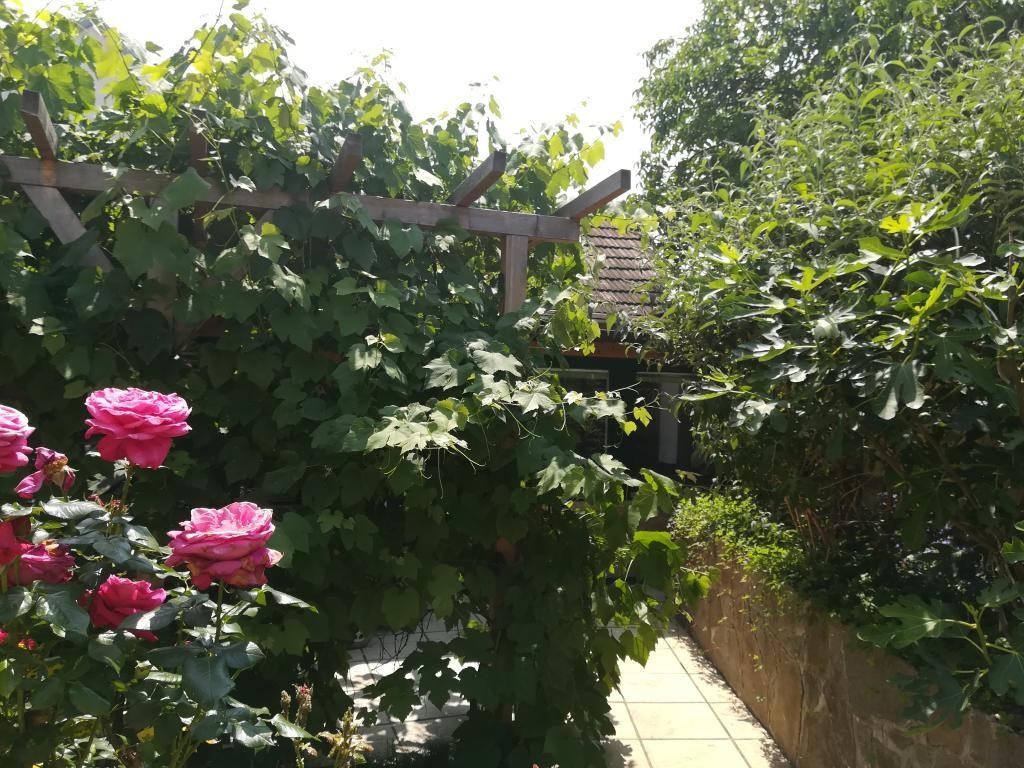 Helles Haus mit gemütlichem Hof /  / 2064Wulzeshofen / Bild 0