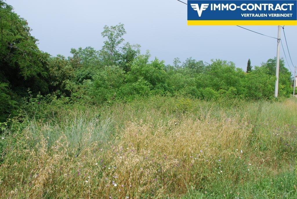 Istrien - Baugrundstück in der Nähe von Umag /  / 52470Murine / Bild 3