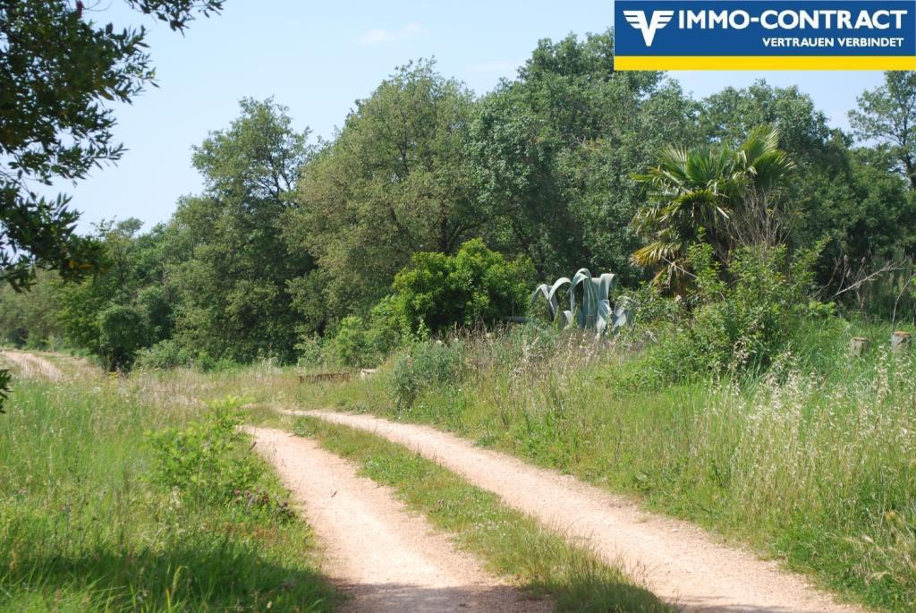 Istrien - Grundstück mit Meerblick und Projekt sucht Investor /  / 52474Karigador / Bild 4