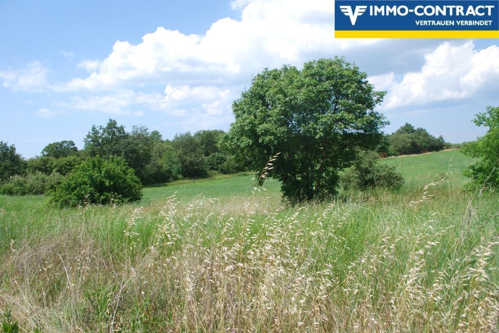 Istrien - Grundstück mit Meerblick und Projekt sucht Investor /  / 52474Karigador / Bild 6