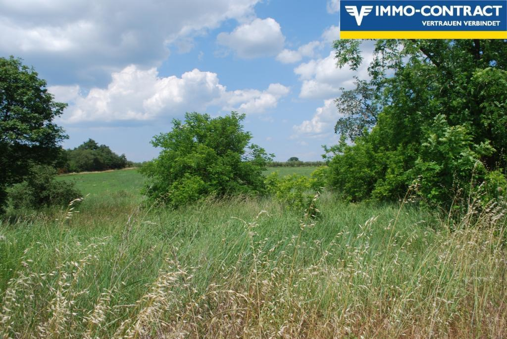 Istrien - Grundstück mit Meerblick und Projekt sucht Investor /  / 52474Karigador / Bild 7