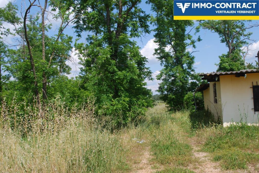 Istrien - Grundstück mit Meerblick und Projekt sucht Investor /  / 52474Karigador / Bild 12