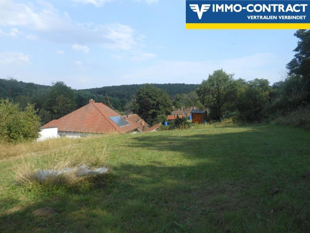 jpgcnt ---- Wunderschönes, geräumiges Familienhaus mit Wiese und Wald in Grünlage /  / 3553Schiltern / Bild 5