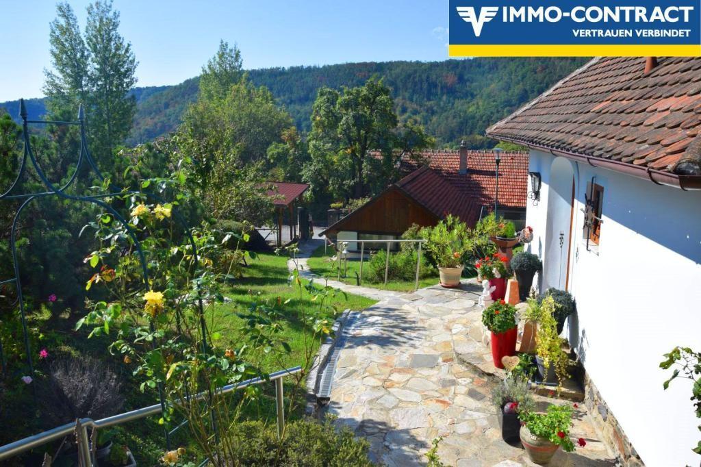Wohnglück Sommerfrische Einzel-Besichtigungen Samstag 29.8., ab 14h - bitte Anmeldung per Email /  / 3571Gars am Kamp / Bild 4