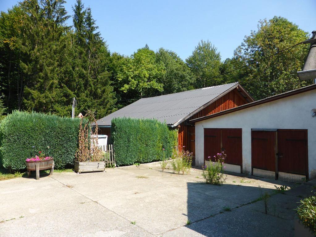 jpgcnt ---- RARITÄT! - Landwirtschaft mit Wohnhaus und privater Schutzhütte auf Waldlichtung in Wiennähe! /  / 3400Klosterneuburg / Bild 14