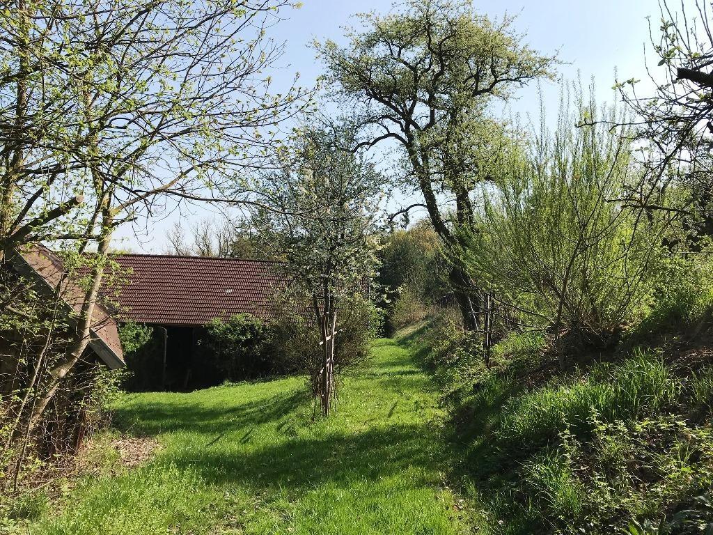jpgcnt ---- PREISREDUZIERT! Großzügiges Landhaus mit 2 Wohneinheiten, Garten und Nebengebäuden! /  / 3661Artstetten / Bild 1
