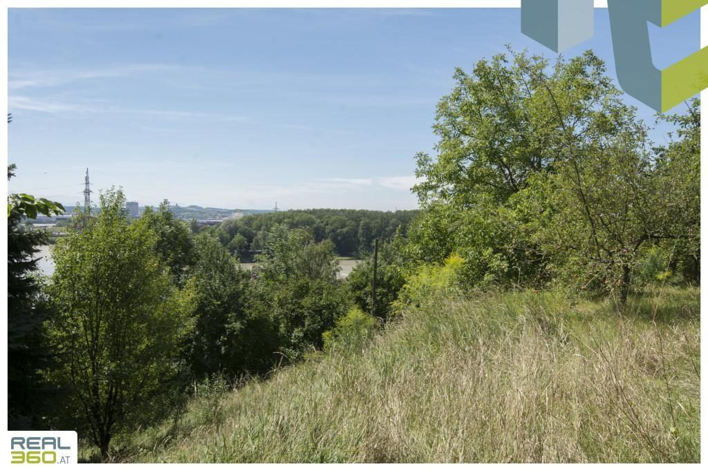 Großzügiges Grundstück mit sanierungsbedürftigem Bestandshaus mit Donaublick in TOP-LAGE von Mauthausen! /  / 4310Mauthausen / Bild 7