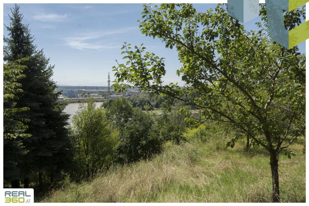 Großzügiges Grundstück mit sanierungsbedürftigem Bestandshaus mit Donaublick in TOP-LAGE von Mauthausen! /  / 4310Mauthausen / Bild 9