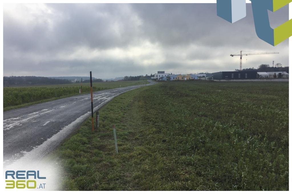 Optimaler Betriebsbaugrund nahe der Autobahn Haag zu verkaufen!
