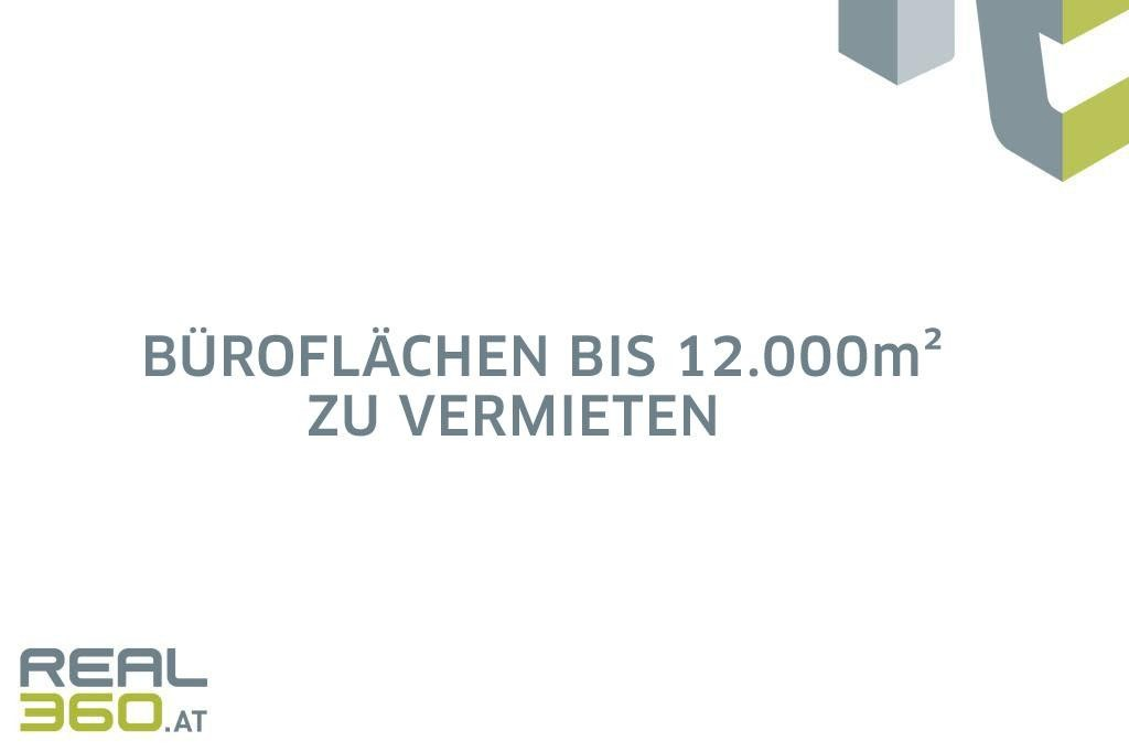 Büroflächen bis 12000m² zu vermieten