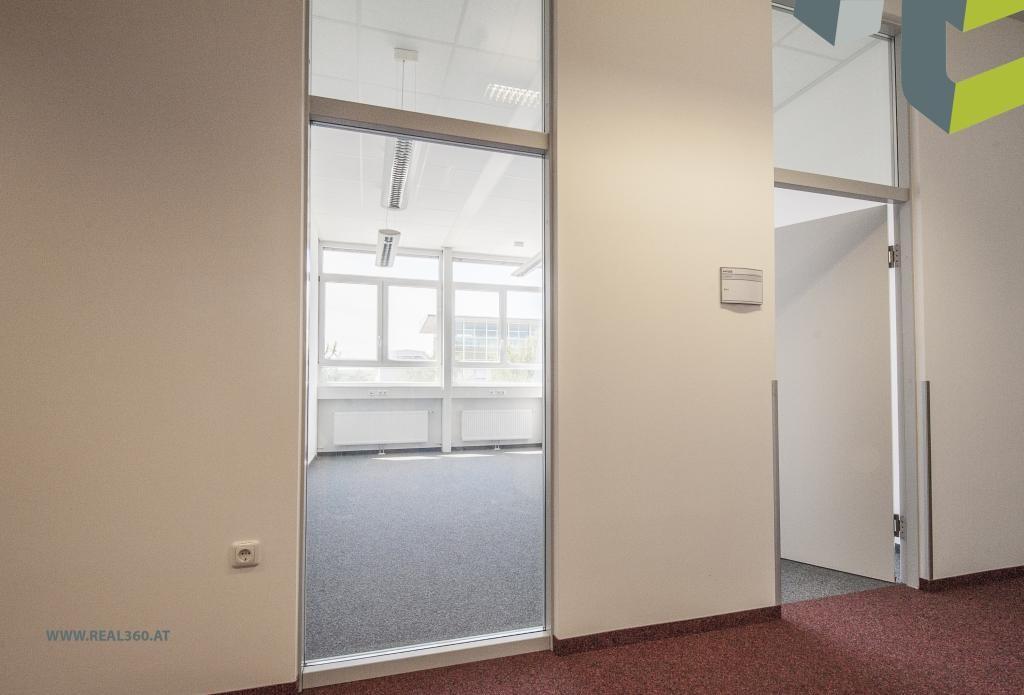 Helle Büroflächen III
