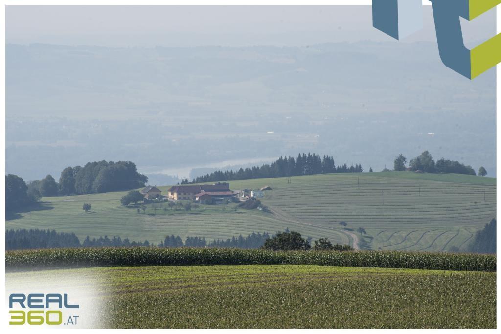 Donaublick Südwest