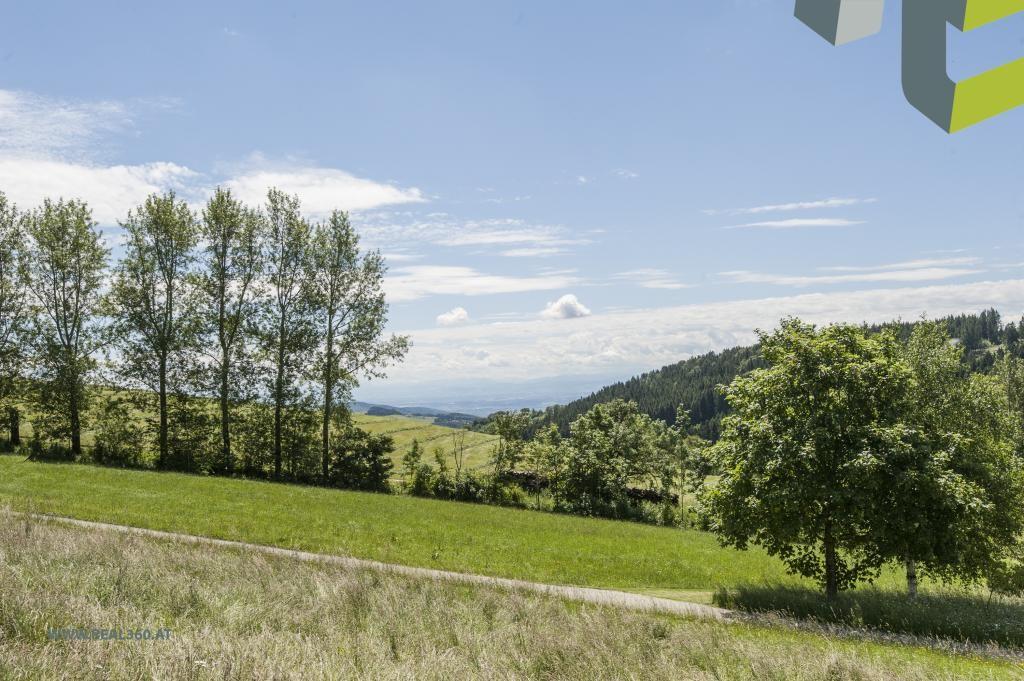 Ausblick vom Grundstück Richtung Süden