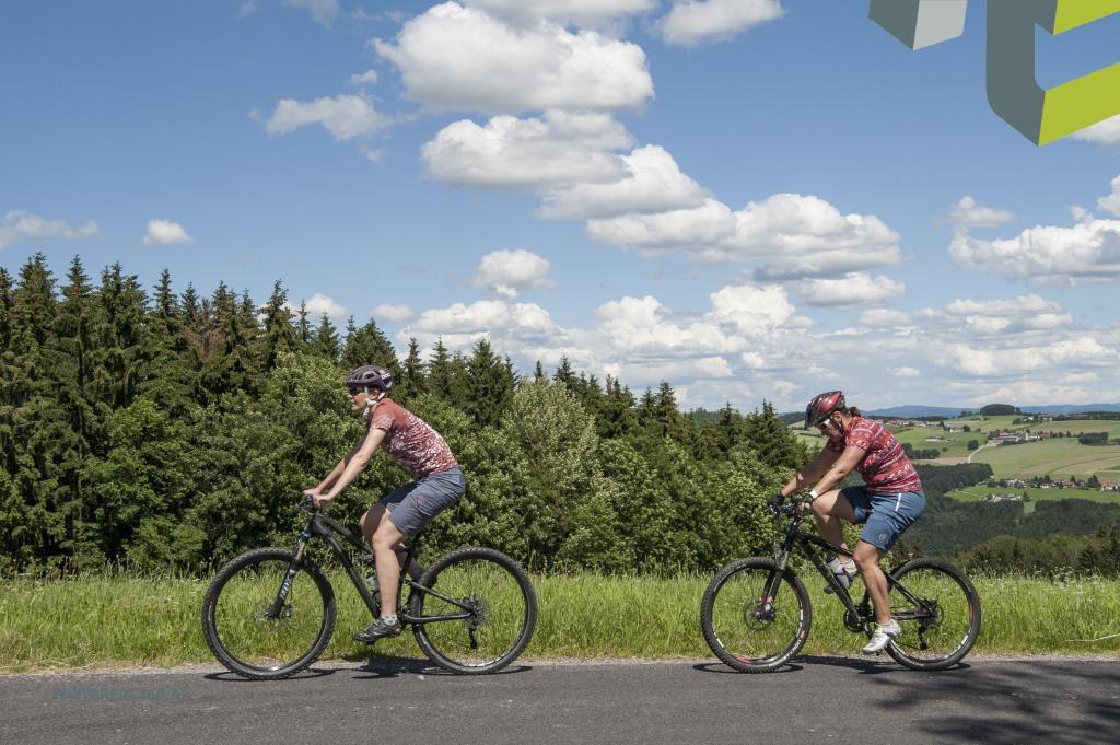 Mountainbiken in der nahen Umgebung