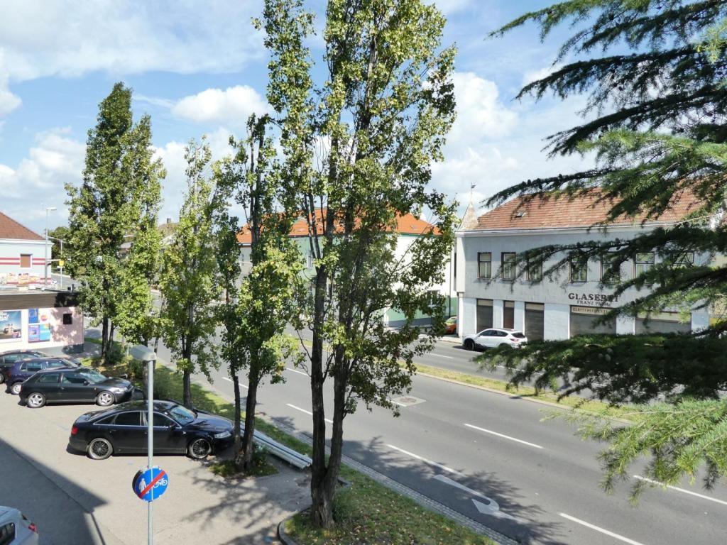 Helle, großzügig aufgeteilte Neubauwohnung in top-saniertem Gebäude /  / 2700Wiener Neustadt / Bild 1