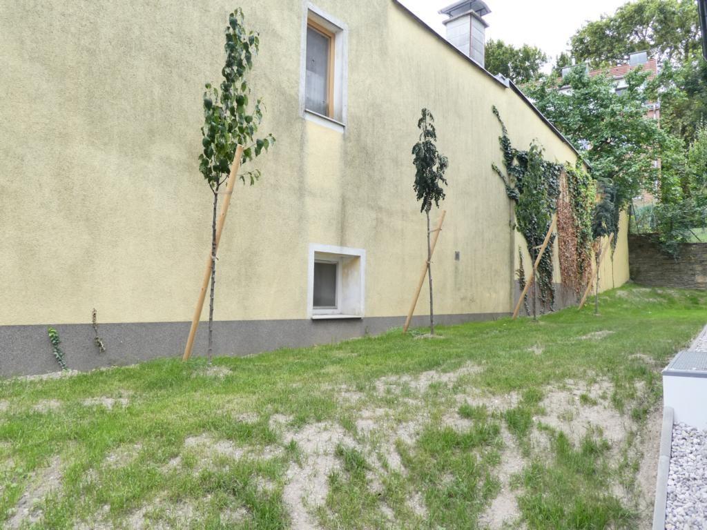 jpgcnt ---- ERSTBEZUG - 4-Zimmer, Terrasse und Garten - Nähe Hütteldorf /  / 1140Wien / Bild 4