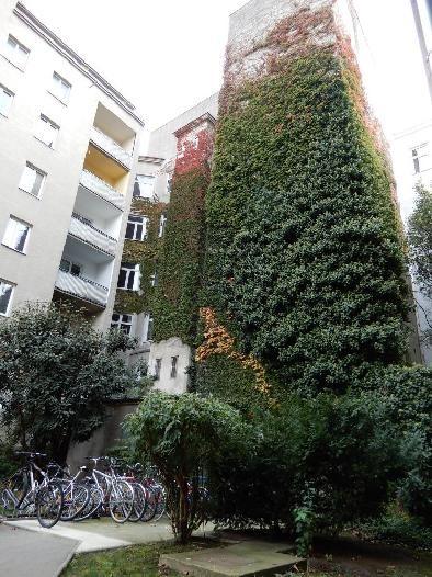 Zentral gelegene Eigentumswohnung *Hochparterre* /  / 1200Wien / Bild 7