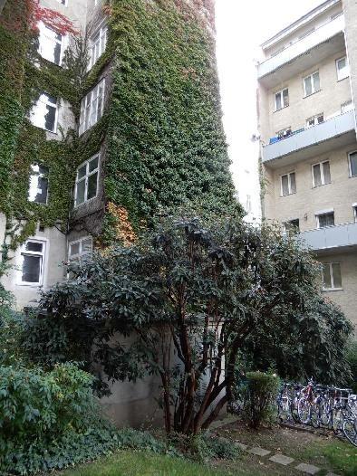 Zentral gelegene Eigentumswohnung *Hochparterre* /  / 1200Wien / Bild 10