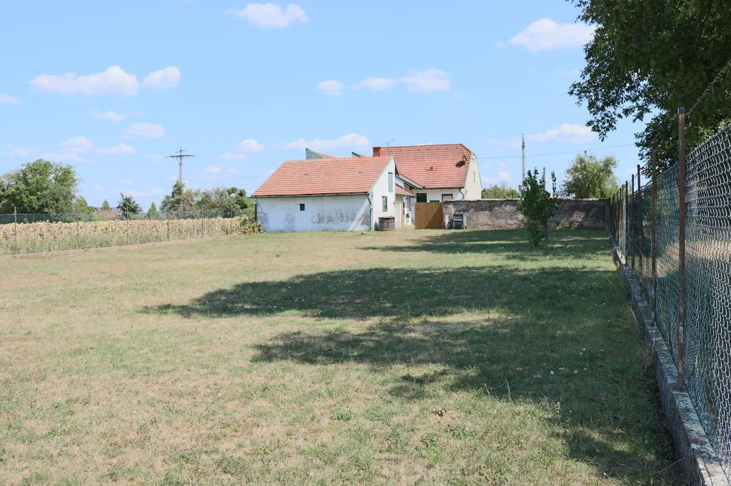jpgcnt ---- Landhaus mit Nebengebäuden auf großem Grund in Drösing /  / 2265Drösing / Bild 7