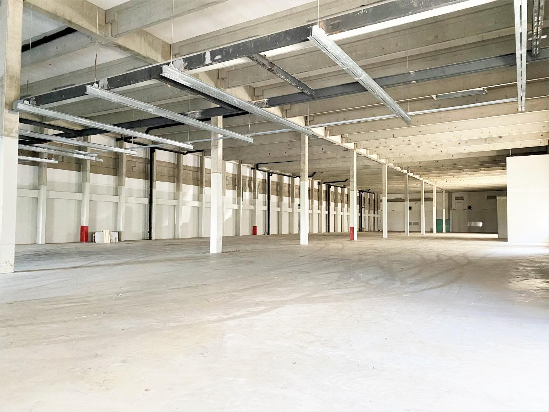 Halle A1 - Aussenansicht