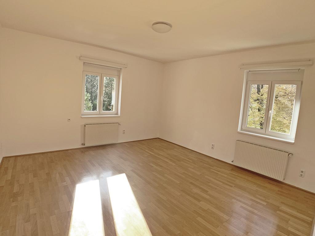 schönes, grosses Haus direkt am Park /  / 1180Wien / Bild 3