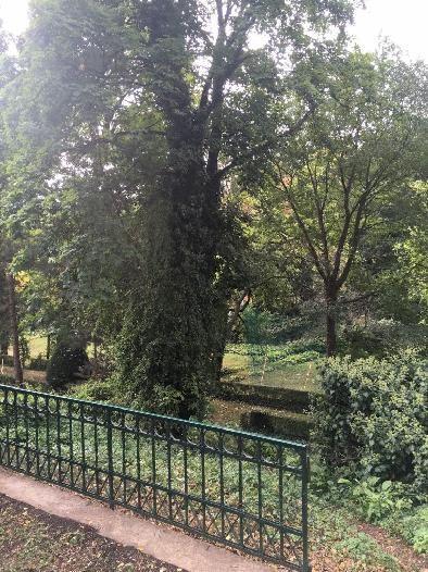 entzückendes Altwienerhaus mit riesigem Garten /  / 1190Wien / Bild 1