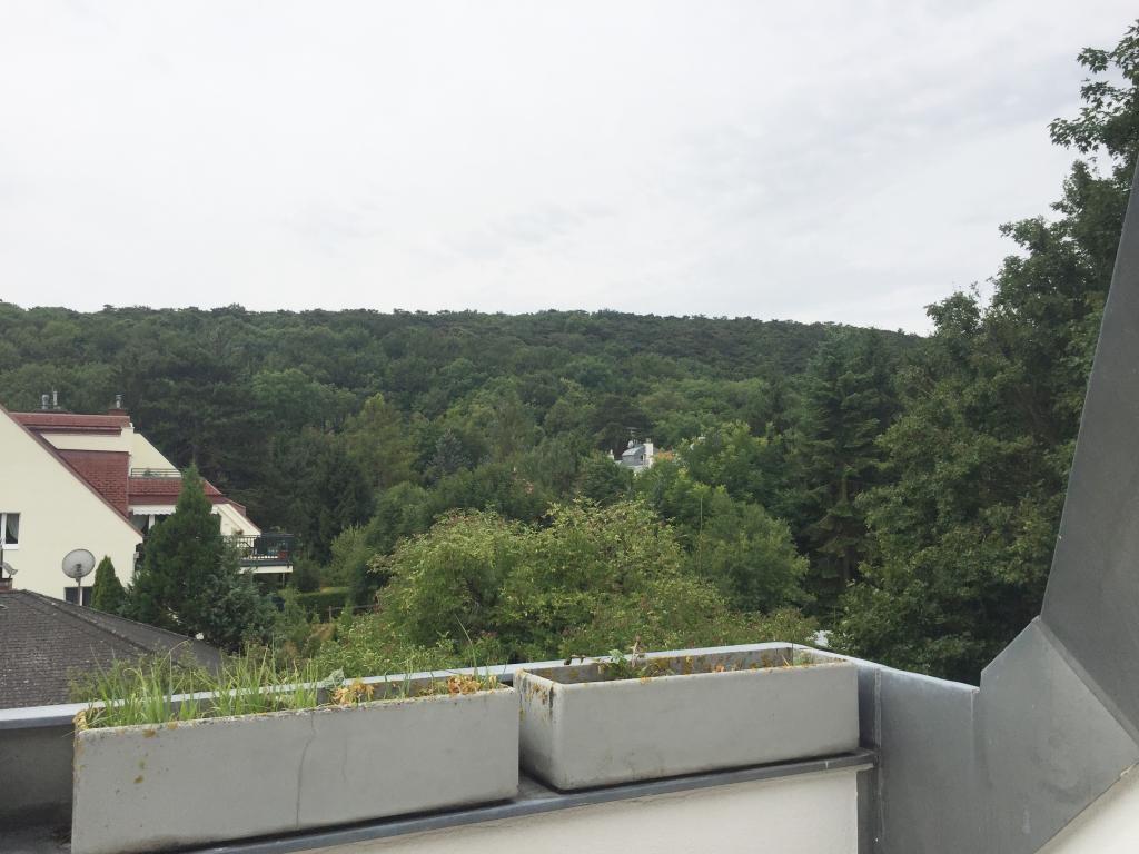 grosszügige Doppelhaushälfte mit kleinem Garten in ruhiger Lage /  / 1230Wien / Bild 0