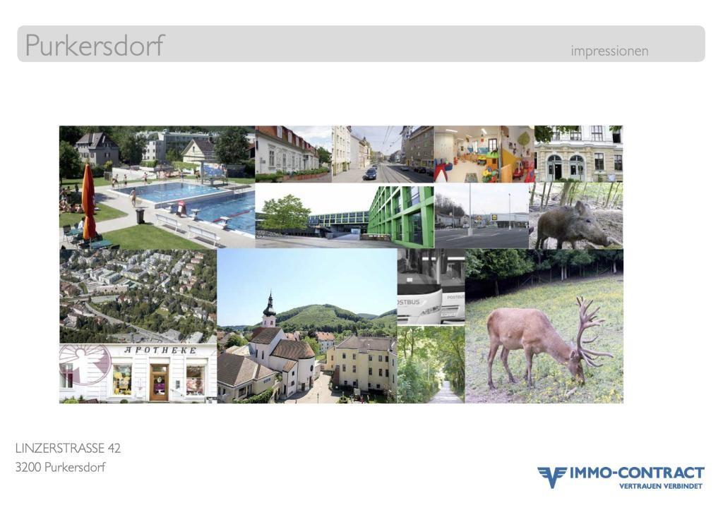 Terrassenwohnung mit 3 Zimmern, 67m2, PLstr42 Top 8 /  / 3002Purkersdorf / Bild 6