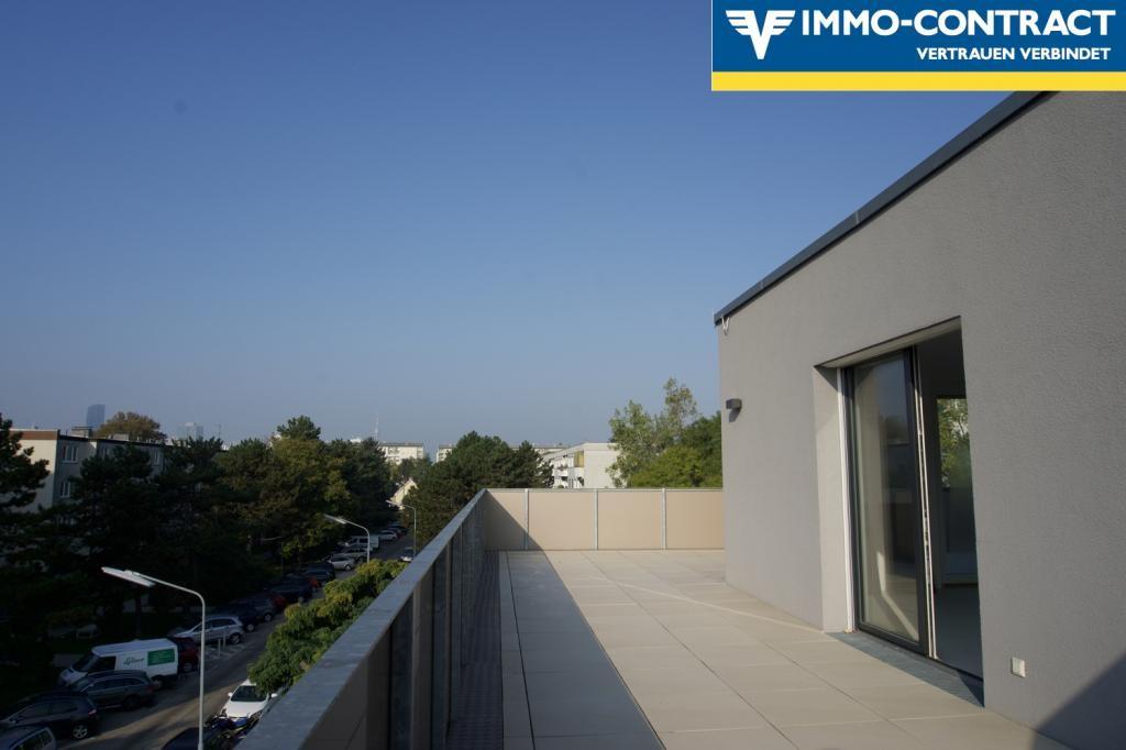 jpgcnt ---- Qualität & Ausstattung die überzeugt!  Schlüsselfertiger DG-Neubau 3-4 Zimmer mit toller Terrasse. Wählen Sie bis Ende 2018 Ihre pers. Ausstattung! /  / 1220Wien / Bild 6