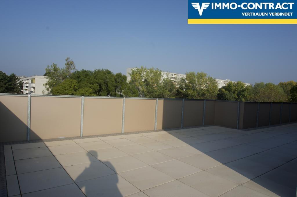 jpgcnt ---- Qualität & Ausstattung die überzeugt!  Schlüsselfertiger DG-Neubau 3-4 Zimmer mit toller Terrasse. Wählen Sie bis Ende 2018 Ihre pers. Ausstattung! /  / 1220Wien / Bild 7