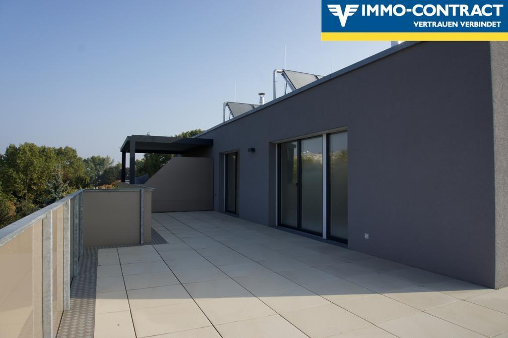 jpgcnt ---- Qualität & Ausstattung die überzeugt!  Schlüsselfertiger DG-Neubau 3-4 Zimmer mit toller Terrasse. Wählen Sie bis Ende 2018 Ihre pers. Ausstattung! /  / 1220Wien / Bild 9